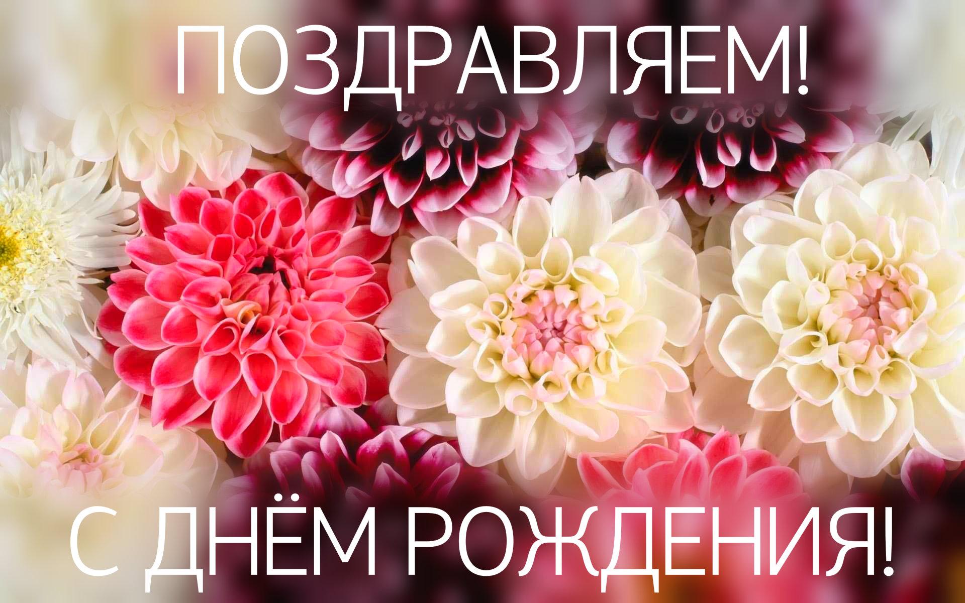 0-News/766615-black-floral-background-tumblr-1920x12.jpg